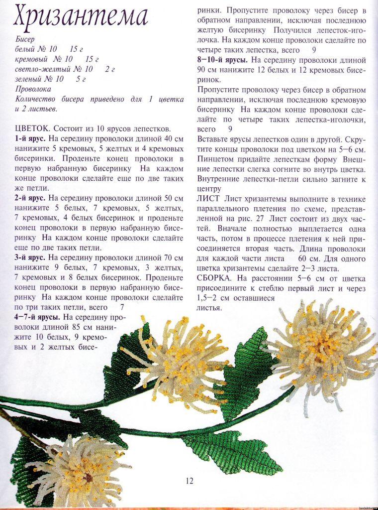 бисера хризантемы схемы из